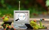 Como buscar imágenes en Google | Recursos y actividades para Educación Infantil y Primaria | Scoop.it