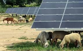 Un décret autorise des expérimentations d'optimisation des flux d'électricité au plan local | great buzzness | Scoop.it
