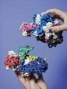 "3-D Molecular Designs - Molecular Education Products | ""Biotech and Mol Bio"" | Scoop.it"