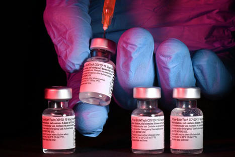 Indre : la police alerte sur une arnaque au vaccin covid ...