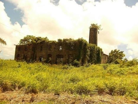 Abandoned Distillery in Barbados | Modern Ruins | Scoop.it