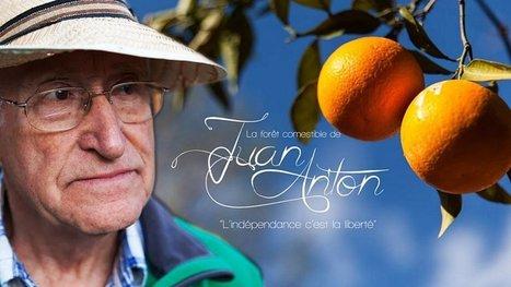Une forêt comestible pour ne plus jamais manquer de rien : la belle idée d'un homme remarquable ! | new paradigm | Scoop.it