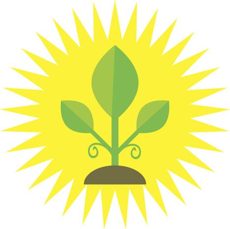 New veggie varieties popping up | Vegetable Gardening Resources | Scoop.it
