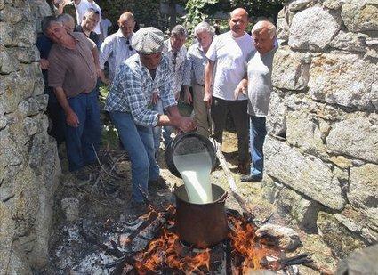 Les produits du terroir corse gagnent quatre nouveaux ambassadeurs étoilés   Corse-Matin   Chefs - Gastronomy   Scoop.it