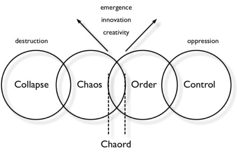 The Expression of Phenomenology in Business | From Complexity to Wisdom | Scoop.it