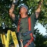Todds Tree Service