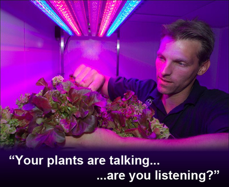 FuturistSpeaker.com – Tapping into the Secret Language of Plants | Knowmads, Infocology of the future | Scoop.it
