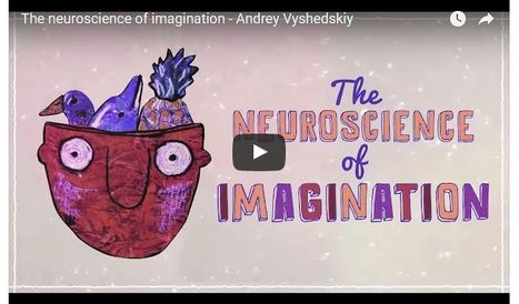 What's Happening In The Brain When Your Imagination Is Active? | 3D animation transmedia | Scoop.it