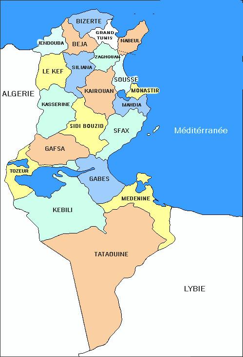 Tunisie : Production abondante, Samir Taïeb annonce une baisse du prix de l'huile d'olive