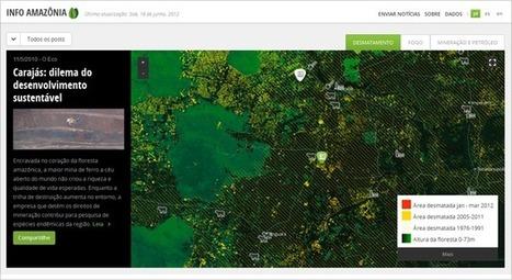 InfoAmazonia mostra a grande floresta como você nunca viu | Planeta Verde | Scoop.it