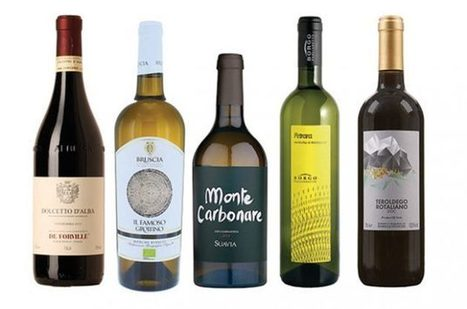 Le Marche Wine in UK among Great wines under £20 | Wines and People | Scoop.it