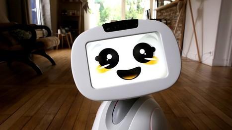Innorobo : les robots qui pourraient être utiles dans le secteur du Tourisme | Objets connectés, Tag2D & Tourisme | Scoop.it