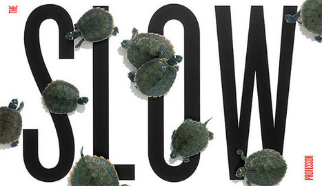 The slow professor | University Affairs | Creativity and learning | Scoop.it
