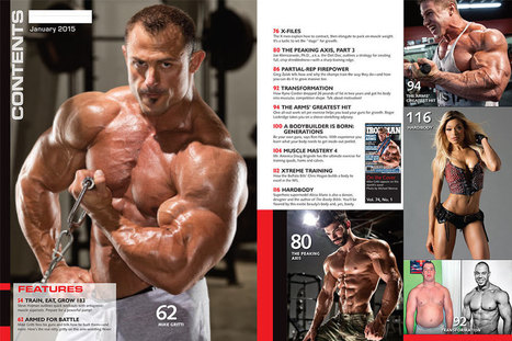 Full body workout for men at the gym pdf 76 d full body workout for men at the gym pdf 76 fandeluxe Image collections