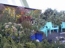 Heavy Petal Nursery: Moses Lake, WA - Where Plants Rock | Annie Haven | Haven Brand | Scoop.it