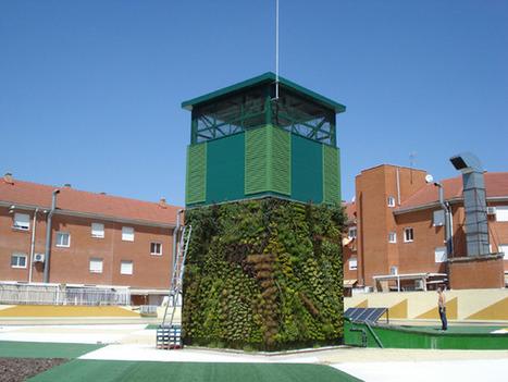 Sinergia 3   Transición de un jardín vertical de 4 caras   Cultivos Hidropónicos   Scoop.it