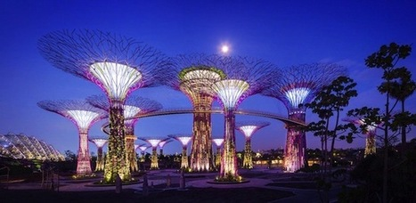 Gardens By The Bay: Singapore's Most Brilliant Architectural Innovation | The Architecture of the City | Scoop.it