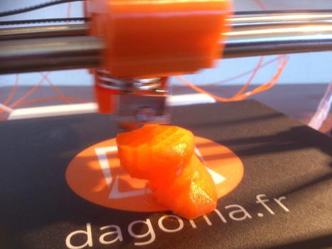 Test de l'imprimante 3D Dagoma Discovery 200 | Brèves de bibliothèque(S) | Scoop.it