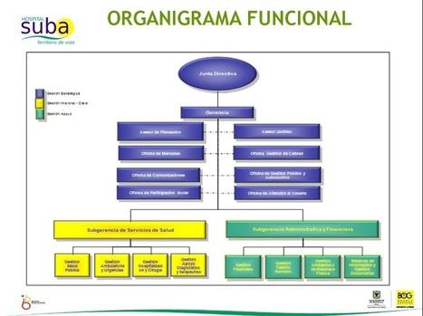 Estructura Organizacional Output Pepsico De