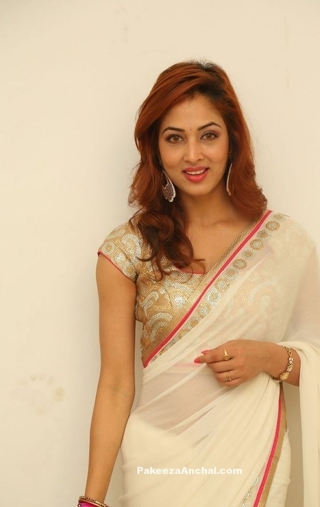 a7659b88df15c Vidisha in White Net Saree with Latest Blouse Back Design for Women