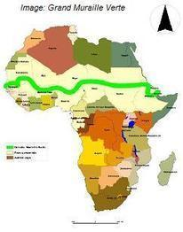 The Great Green Wall Of Africa -- A 4,000 Mile Defense Against Climate Change | PlanetSave | World Regional Geography | Scoop.it