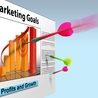 Using the web to achieve targeted business results