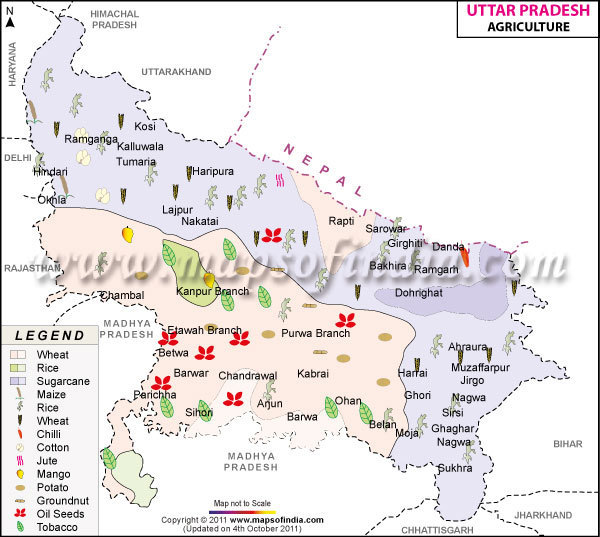 Uttar pradesh agriculture map agriculture map for Cuisines of uttar pradesh