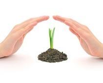 Reiki : Semer maintenant pour récolter votre Bien-être | zenitude - toucher bien-être strasbourg | Scoop.it