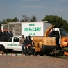 Tree Care Services Johannesburg