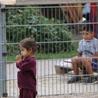 """""""Little Salam"""" ou l'aide à l'insertion scolaire et sociale des jeunes syriens"""