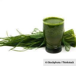 The Potential Health Benefits of Wheatgrass | Geekari | Scoop.it