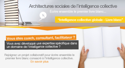 [Intelligence collective globale] Livre blanc sur l'intelligence collective globale et observatoire de l'IC | Collective2innovation | Scoop.it