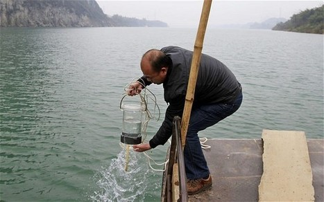 China's disregard for the environment shows no sign of improving | Global Insights | Scoop.it