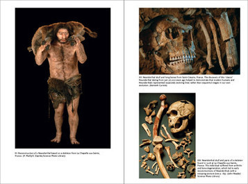 Thames & Hudson Publishers | Essential illustrated art books | The Neanderthals Rediscovered | Anthropology, Archaeology, and History | Scoop.it