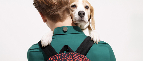Cute boys and puppies alert! Check out these snaps by Philippe Jarrigeon   What's new in Visual Communication?   Scoop.it