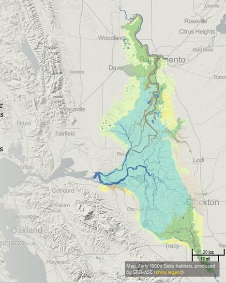 California's Deadlocked Delta | Geography Education | Scoop.it