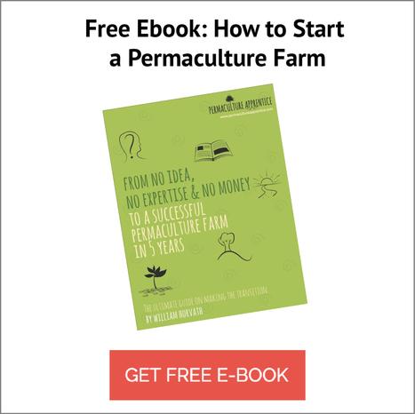 Resources - Permaculture Apprentice | Eco Village | Scoop.it
