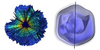 Three-Dimensional Reconstruction of the Giant Mimivirus Particle with an X-Ray Free-Electron Laser | Virology News | Scoop.it