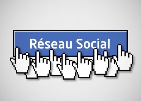 L'impact des réseaux sociaux sur les marques en France - Emarketing | Digital Marketing Cyril Bladier | Scoop.it