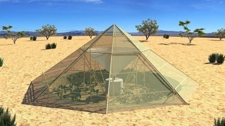 Roots Up greenhouse collects mountain dew to water crops in Ethiopian highlands | Stu Robarts | GizMag.com | 911 | Scoop.it