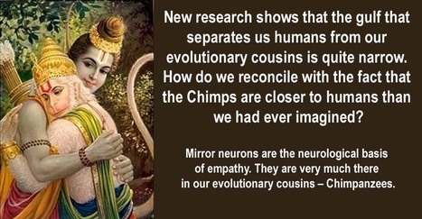 Empathy No Longer Divides Humans And Chimps. What Now?   Empathy and Animals   Scoop.it