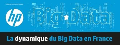 Une infographie pour comprendre la dynamique du Big Data en France | Logiciels libres,Open Data,open-source,creative common,données publiques,domaine public,biens communs,mégadonnées | Scoop.it