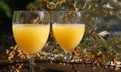 How to make sea buckthorn fizz | Life and style | guardian.co.uk | @FoodMeditations Time | Scoop.it