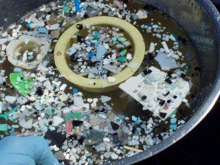 """Un gigantesque """"continent"""" de déchets se forme dans le Pacifique Nord - notre-planete.info   Equitable & durable   Scoop.it"""