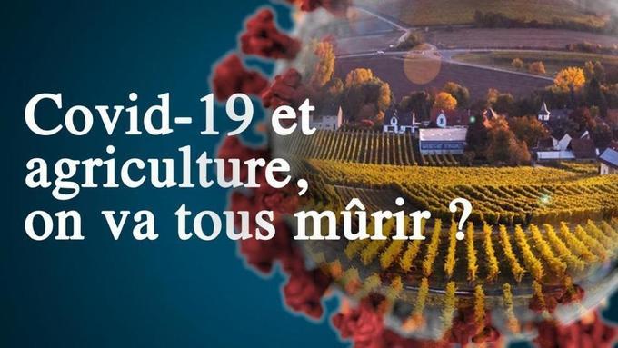 France: [Covid-19] « Comment bâtir un système alimentaire résilient ? »
