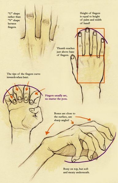 'hands reference' in Drawing References and Resources