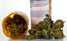 """Scientific Review: """"There Is Now Clear Evidence That Cannabinoids Are Useful For The Treatment Of Various Medical Conditions"""" 