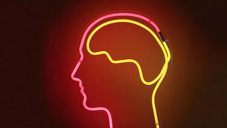 Mind Reading Comes One Step Closer To Reality With The Glass Brain | The Art and Science of Colour. | Scoop.it