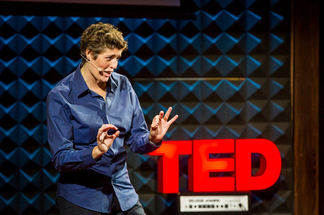 A more united United States of America: Sally Kohn's liberal views on Fox News & Today | TED Blog | Innovation & Institutions, Will it Blend? | Scoop.it