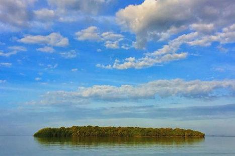 Florida Keys Island with a $110 Million Price Tag - Share on Meebal.com   Worldwide News   Scoop.it
